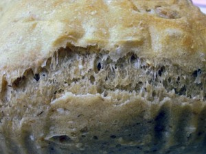 Closeup of loaf made with white and malted wheat flour.