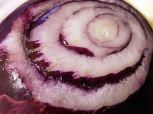 Cloesup of a red onion.